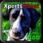 Benutzerbild von XpertsQuest